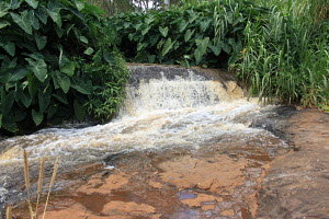 Kiambu county in Kenya offer natural water that are used by the local communities to do farming and other domestic activities, the stream also has beautiful sites for picnic , photography and it is al...