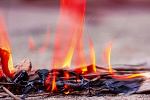 Flames caught up close while burning herbs