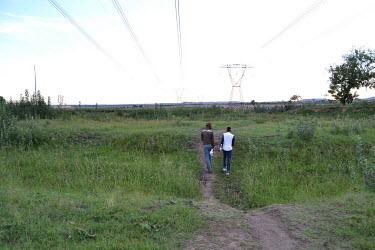 Eden Park, Powerlines, Nature, Green grass, Poerlines, Trees